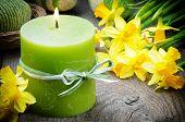 Ajuste de la primavera con Narciso amarillo y vela
