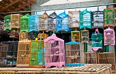 Litle birds in the cage. Java, Indonesia. Freedom concept.