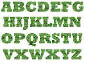 Fonte de grama do alfabeto