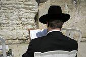 picture of tora  - Hasidic jew reading torah at the wailing western wall jerusalem israel - JPG
