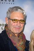 LOS ANGELES - DEC 6:  Michael Nouri arrives at the 'Promised Land' Premiere at Directors Guild of Am
