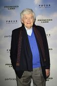 LOS ANGELES - DEC 6:  Hal Holbrook arrives at the 'Promised Land' Premiere at Directors Guild of Ame