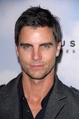 LOS ANGELES - DEC 6:  Colin Egglesfield arrives at the 'Promised Land' Premiere at Directors Guild o