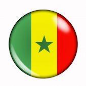 Button Flag Of Senegal