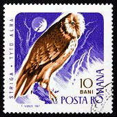 Postage stamp Romania 1967 Barn Owl, Bird of Prey