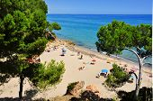 MONT-ROIG DEL CAMP, SPAIN - AUGUST 10: Vacationers in Cala dels Vienesos beach on August 10, 2012 in