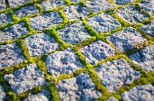 cobblestones with moss