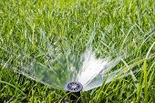stock photo of valves  - Garden sprinkler on a sunny summer day during watering the green lawn in garden