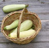 Basket With Fresh Zucchini