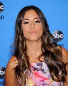 LOS ANGELES - AUG 04:  Chloe Bennet arrives to ABC All Star Summer TCA Party 2013  on August 04, 2013 in Beverly Hills, CA