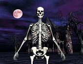 Skeleton In Front Of Haunted House