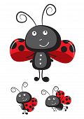 Cute ladybug vector.