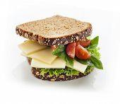 Tasty gourmet sandwich in whole grain bread