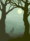 stock photo of wolf moon  - Vector illustration of wolf howling at moon in night forest in green tone - JPG