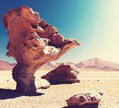 Arbol de Piedra - Stone rock formation, Bolivia