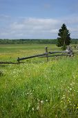 picture of split rail fence  - old split rail fence in a green summer meadow