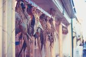 Pheasants Hanging Outside Butcher's Shop