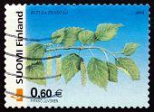 Postage Stamp Finland 2002 Silver Birch, Tree