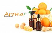 Tangerine essential oil and tangerines, isolated on white