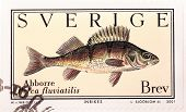 Perch Stamp
