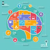 Puzzle in the form of abstract human brain surrounded infographic education. Education concept with
