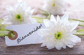 Label With Bienvenido