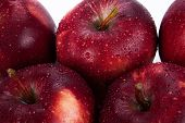 Maroon Apples Closeup