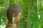 Golden Buddha Is On A Background Of Bamboo Thickets