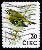 Postage Stamp Ireland 1998 Goldcrest, Passerine Bird