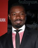LOS ANGELES - FEB 25:  David Oyelowo at the 2nd Annual ICON MANN Power Dinner at Peninsula Hotel on February 25, 2014 in Beverly Hills, CA