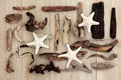 Starfish and driftwood abstract design over old oak background.
