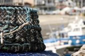 Fishing Basket  In Harbour