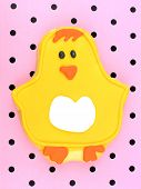 image of poka dot  - Spring themed cookie decorated as a chick on a pink paper background - JPG