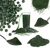 Spirulina algae powder glass drink nutritional supplement close up collage , isolated on white backg