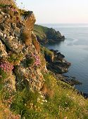 Picturesque Landscape Of Mullion Cove, Cornwall, South England
