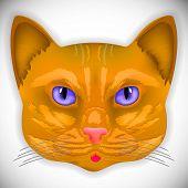 cat, face, eyes, vector, animal, cute, kitten, bow, hair, facial, portrait,