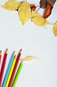 Notebook With Colored Pencils And Autumn Leaves On A Wooden Surface.