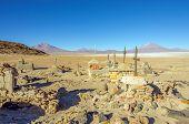 Salar de Uyuni, Bolivia - small cemetery in the middle of desert
