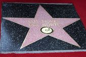 LOS ANGELES - AUG 21:  Walk of Fame Star for Los Tigres Del Norte at the Los Tigres Del Norte Honored On The Hollywood Walk Of Fame at Live Nation Building on August 21, 2014 in Los Angeles, CA