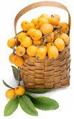 image of loquat  - Fresh loquat fruit in basket with leaves isolated on white background - JPG