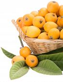 Loquat Fruits   In The Basket