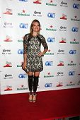 LOS ANGELES - AUG 21:  Amy Purdy at the OK! TV Awards Party at Sofiitel L.A. on August 21, 2014 in West Hollywood, CA