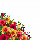 Background with roses and freesia flowers. Vector illustration.