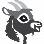 The Head Of Goat