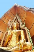 Budda Sitting In Bothi Leave, Thailand