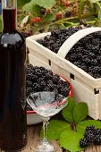 Ripe Blackberries In Bowl And Fruit Box