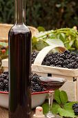 Ripe Blackberries And Liquer