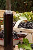 Ripe Blackberries And Liquer