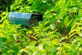 Green Security Camera