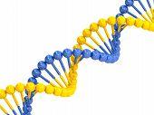 Yellow Blue Dna Molecule